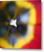 Within The Tulip Metal Print