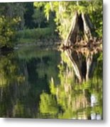 Withlacoochee Cypress Reflections Metal Print