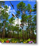 Withlacoochee State Forest Nature Collage Metal Print
