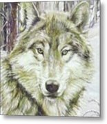 Wolf Head Metal Print