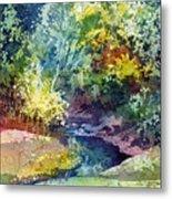 Wolf Pen Creek Metal Print