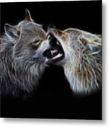 Wolves Portrait Metal Print by Julie L Hoddinott