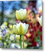 Photographer Behind The Flowers Metal Print