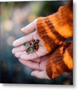 Woman Hands Holding Cranberries Metal Print