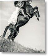 Woman In Dress Riding Chestnut Black Rearing Stallion Metal Print