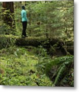 Woman On A Moss Covered Log In Olympic National Park Metal Print