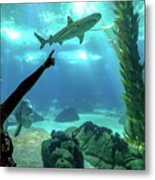 Woman Shark Enjoyng Metal Print