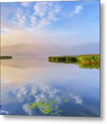 Wonderful Morning IIi Metal Print