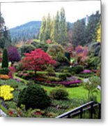 Wonderful Sunken Garden In The Butchart Gardens,victoria,canada 1. Metal Print