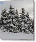 Wonderful Winter Metal Print