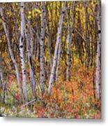Wonderful Woods Wonderland Metal Print
