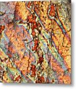 Wood And Rust Metal Print by Carol Groenen