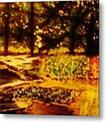 Wood At Night Metal Print by Marie Bulger
