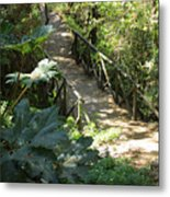 Wood Bridge On A Trail Metal Print