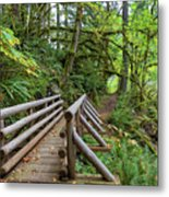 Wood Bridge Over Butte Creek Metal Print