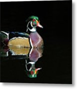 Wood Duck Reflection Metal Print