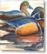 Wood Ducks Metal Print