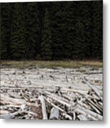 Wood Forest At Duffy Lake Metal Print