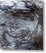 Wood Grain Of Buena Vista  Metal Print
