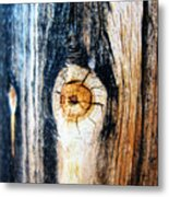 Wood In Macro #1 Metal Print