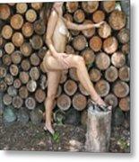 Wood Shed 269 Metal Print