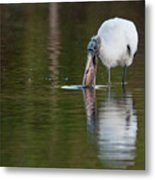 Wood Stork With Fish Metal Print