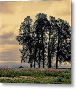 Woodburn Oregon - Sky Lights Metal Print