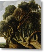 Wooded Landscape Metal Print