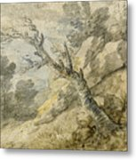 Wooded Landscape With Rocks And Tree Stump Metal Print