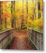 Wooden Bridge   Hdr Metal Print