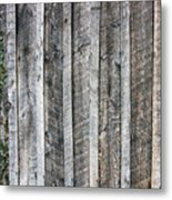 Wooden Fence And Ivy Metal Print