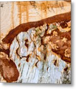 Wooden Landscape - Natural Abstract Structure Metal Print