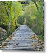Wooden Path Metal Print