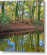Woodland Canal 2 Metal Print