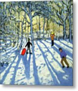 Woodland In Winter Metal Print