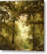 Woodland Passage Metal Print