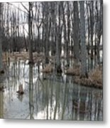 Woodland Stillness  Metal Print