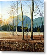 Woodland Sunset Metal Print