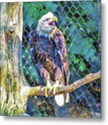Woodlands Nature Station Metal Print