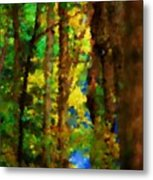 Woods Approach To Lake Metal Print