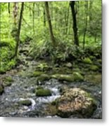 Woods - Creek Metal Print