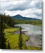 Wood's Lake Summer Landscape Metal Print