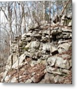 Woods Of Lake Guntersville Metal Print