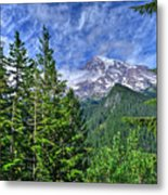 Woods Surrounding Mt. Rainier Metal Print