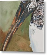 Woodstork Eye Metal Print