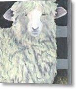 Wooly One Metal Print