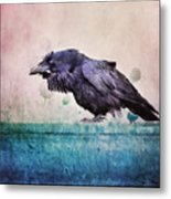 Words Of A Raven Metal Print