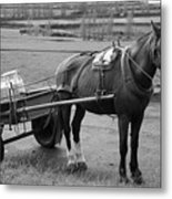 Work Horse And Cart Metal Print