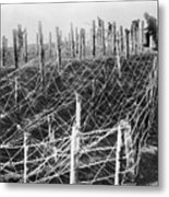 World War I Barbed Wire Metal Print