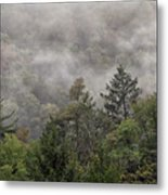 Worlds End State Park Fog Metal Print